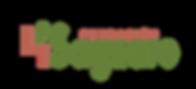 logo saguaro fundacion.png