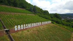Am Großheubacher Bischofsberg