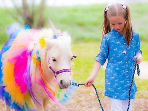 Unicorn-144_edited.jpg