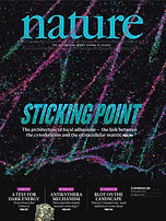November 25_2010 Nature Cover Web.jpg