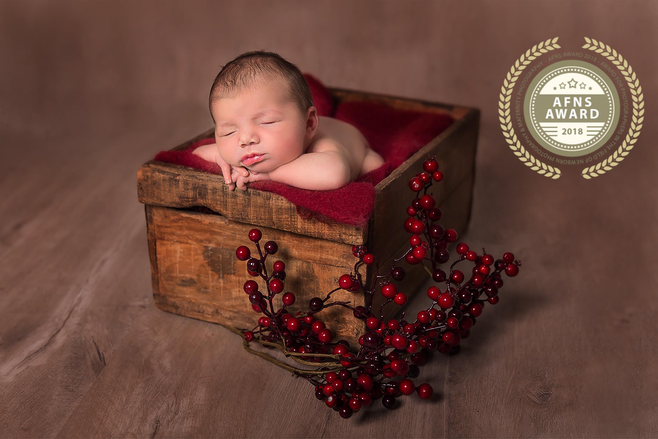 Newbornshoot Inge Bollen Fotografie