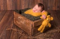 Newbornfsessie bij Inge Bollen