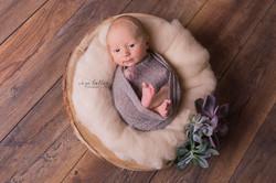 Newborn Inge Bollen Fotografie