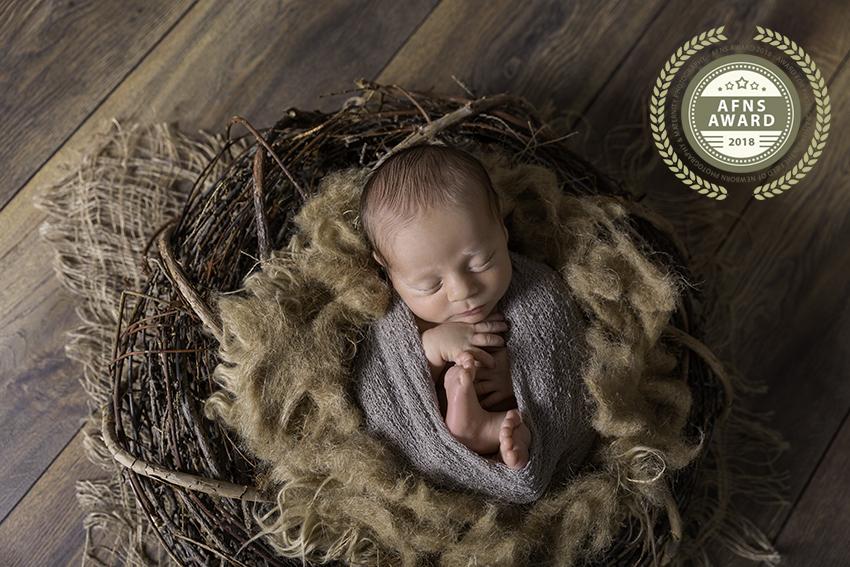 Newborn Award AFNS Inge Bollen