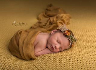 Een newbornsessie bij Inge Bollen Fotografie