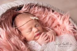 Newbornfotografie bij Inge Bollen