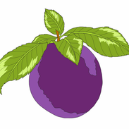 Attachment-1 (10).png