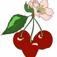 Attachment-1 (6).png