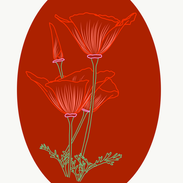 Attachment-1 (18).png