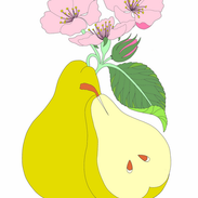 Attachment-1 (13).png