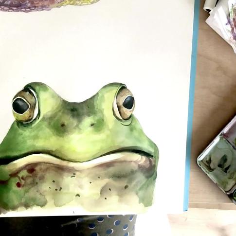 toad.mov