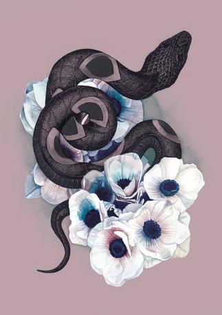 snake2_.jpg