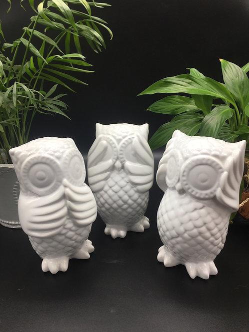 White owl set