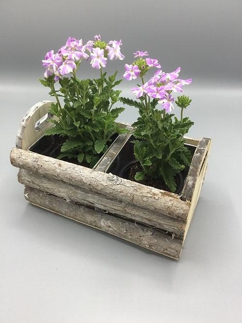 Rustic double planter