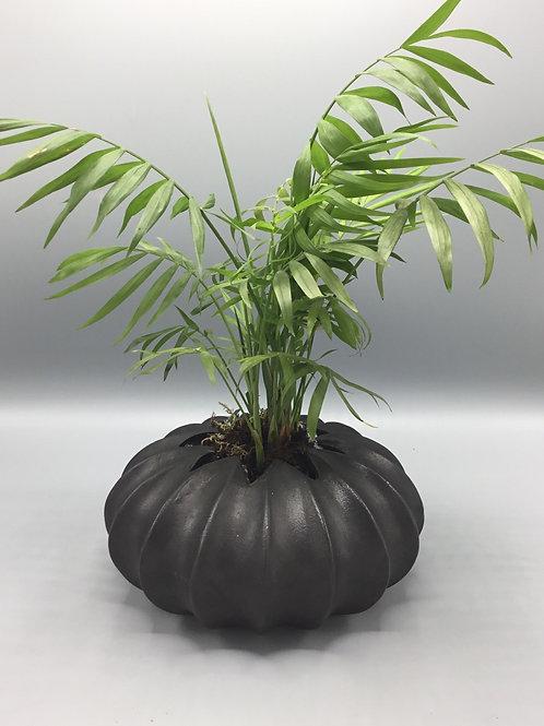 Black Waved effect pot