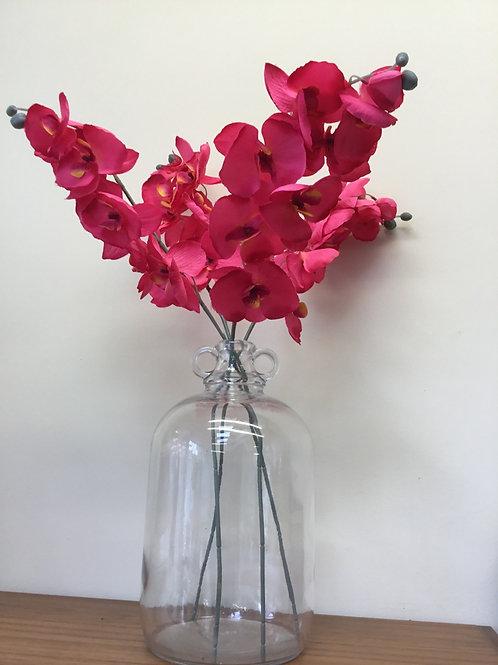Pink Orchid Stem