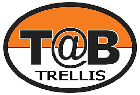 Trellis Prints for T@b: Set of Two