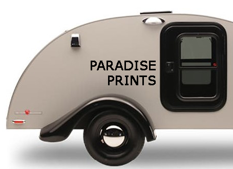Paradise Prints for Silver Shadow: Set of Two