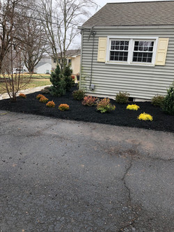 Landscaping - After