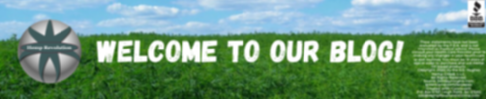 Blog Page Banner 980 x 200.png