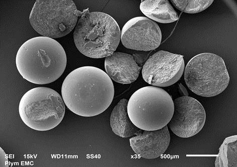 Image of microplastic particles taken under an Electron Microscope.