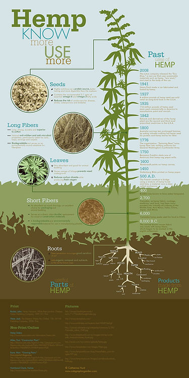Infographic on Hemp history and useful parts