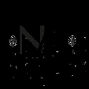 nazar care logo copie.png