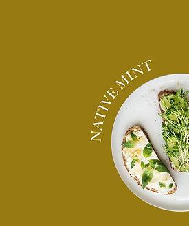 TheNativeCo_ProductImages-NativeMint1.jp
