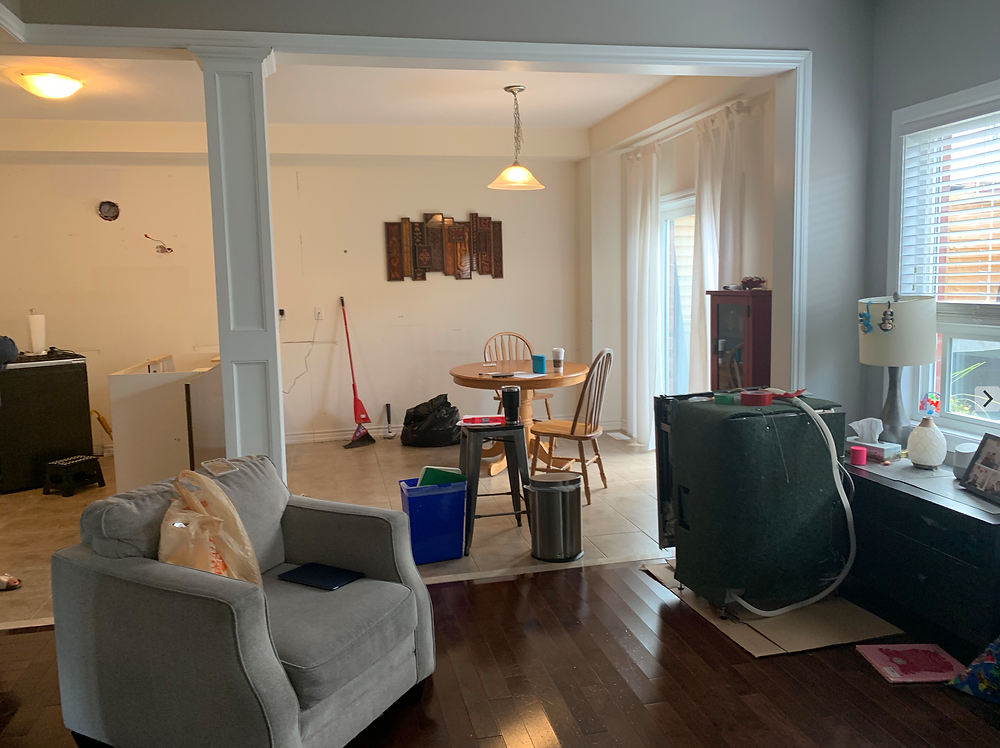 before-image-the-williams-project-kitchen-reno-mess-living-room-