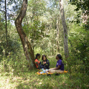 Ngong Forest Picnic