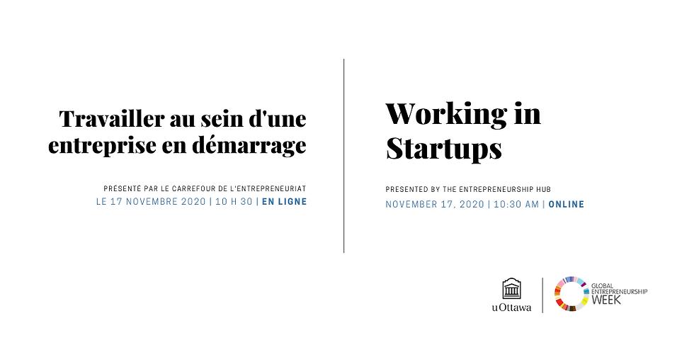 Travailler au sein d'une entreprise en démarrage   Working in Startups