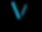 Initiative Venture VER Blanc.png