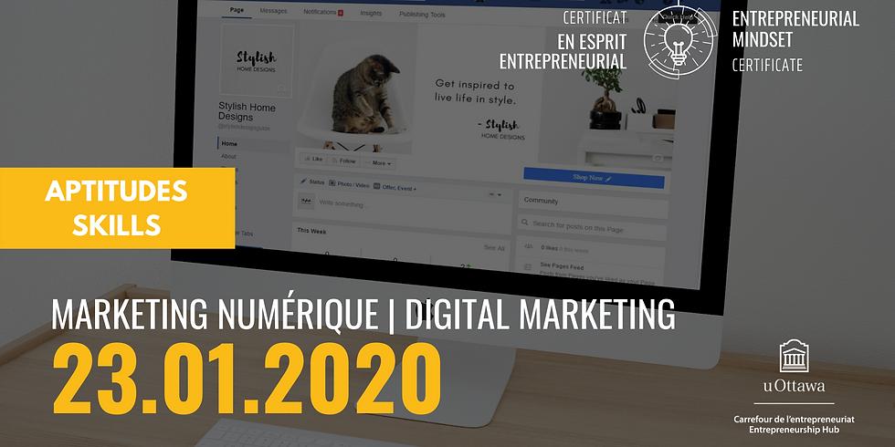 CEE: Marketing numérique   EMC: Digital Marketing