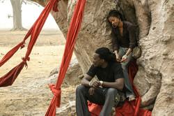 couple dans baobab