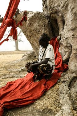 absa-sang baobab