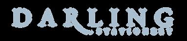 DS logo - blue 2021.png
