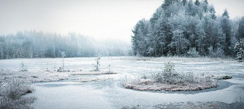 Vinterdrakt - Winter wonder land