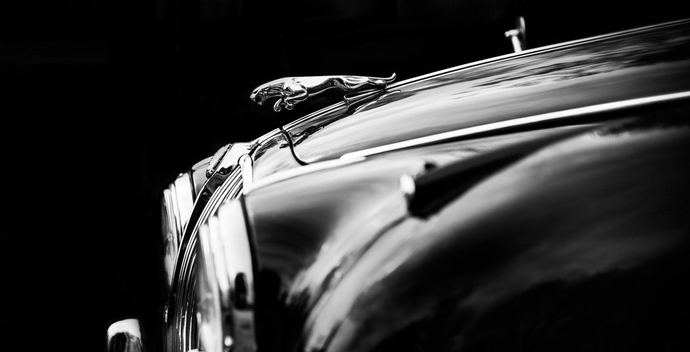 The Jaguar.jpg