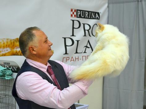 Гран-При ПроПлан
