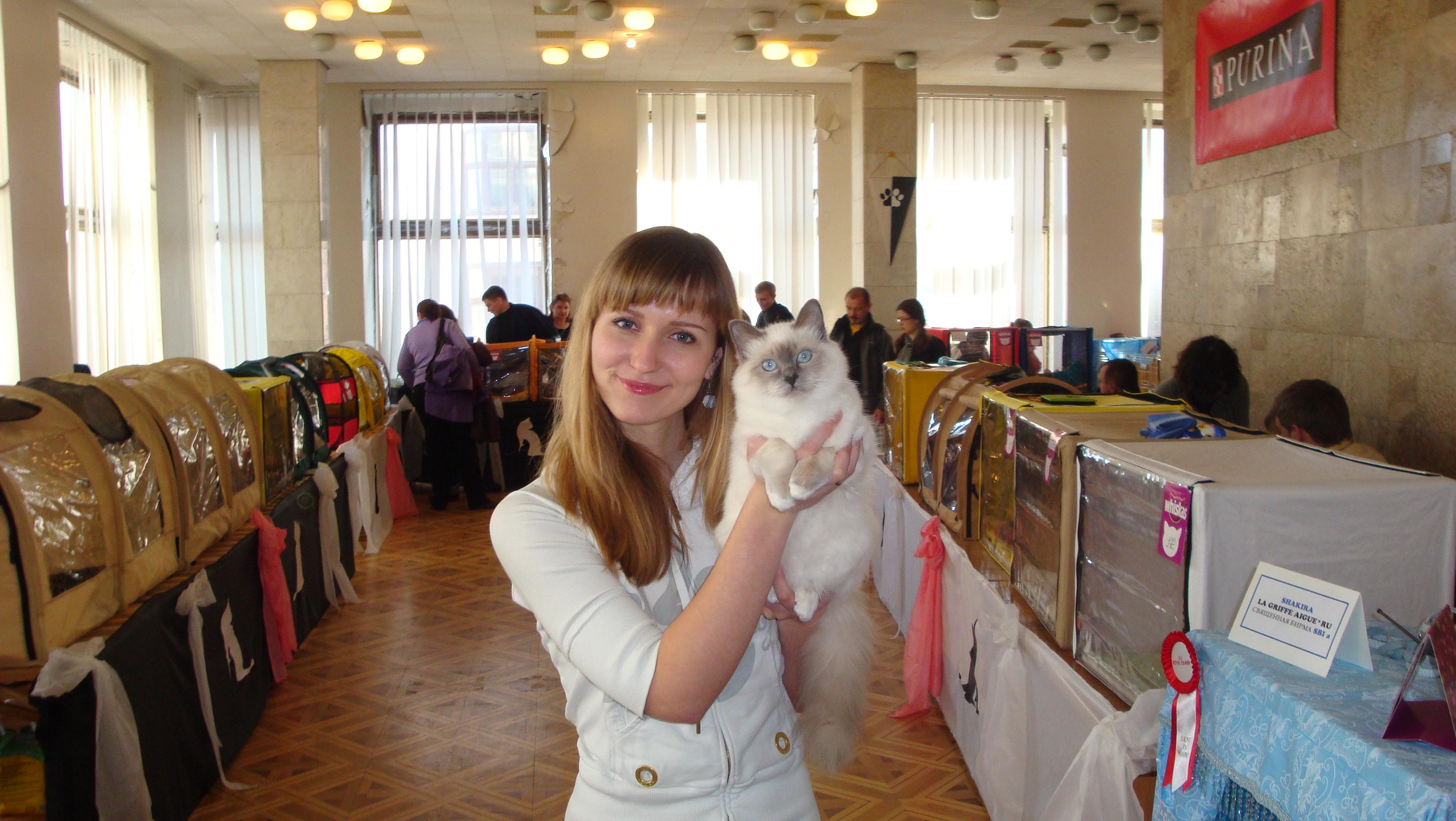 Шакира, Киев, 6 мес.