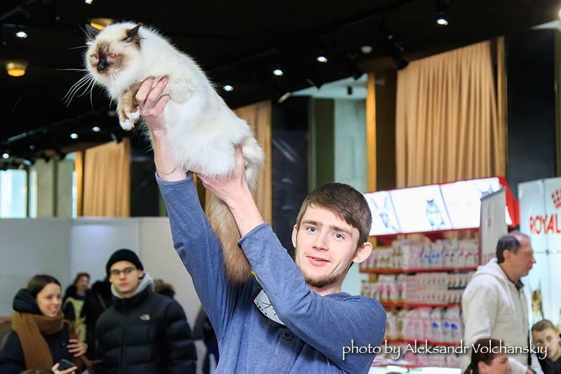 Дения лучшая кошка