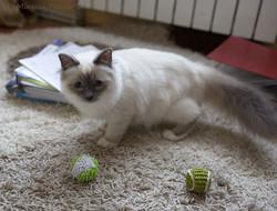 Фрида с мячиками