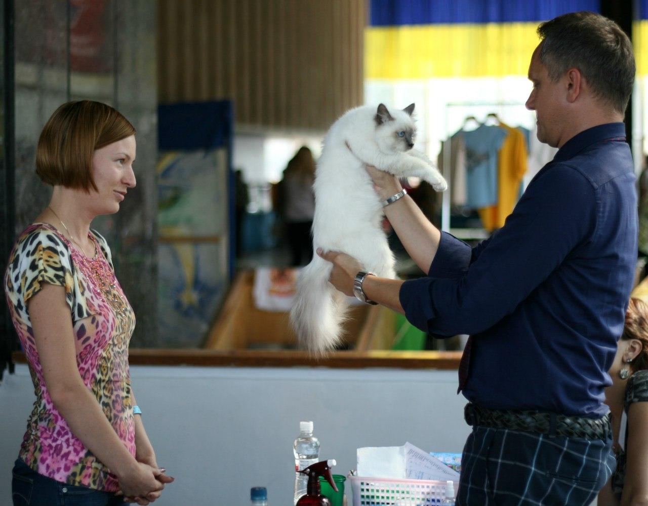 Бьянка на экспертизе, Киев, 5,5 мес.