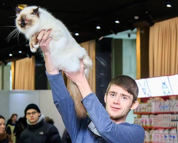Дения лучшая кошка3