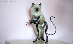 Эклер и кованый кот, 2 мес.
