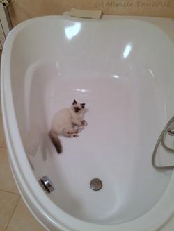 Мирочка в любимой ванной