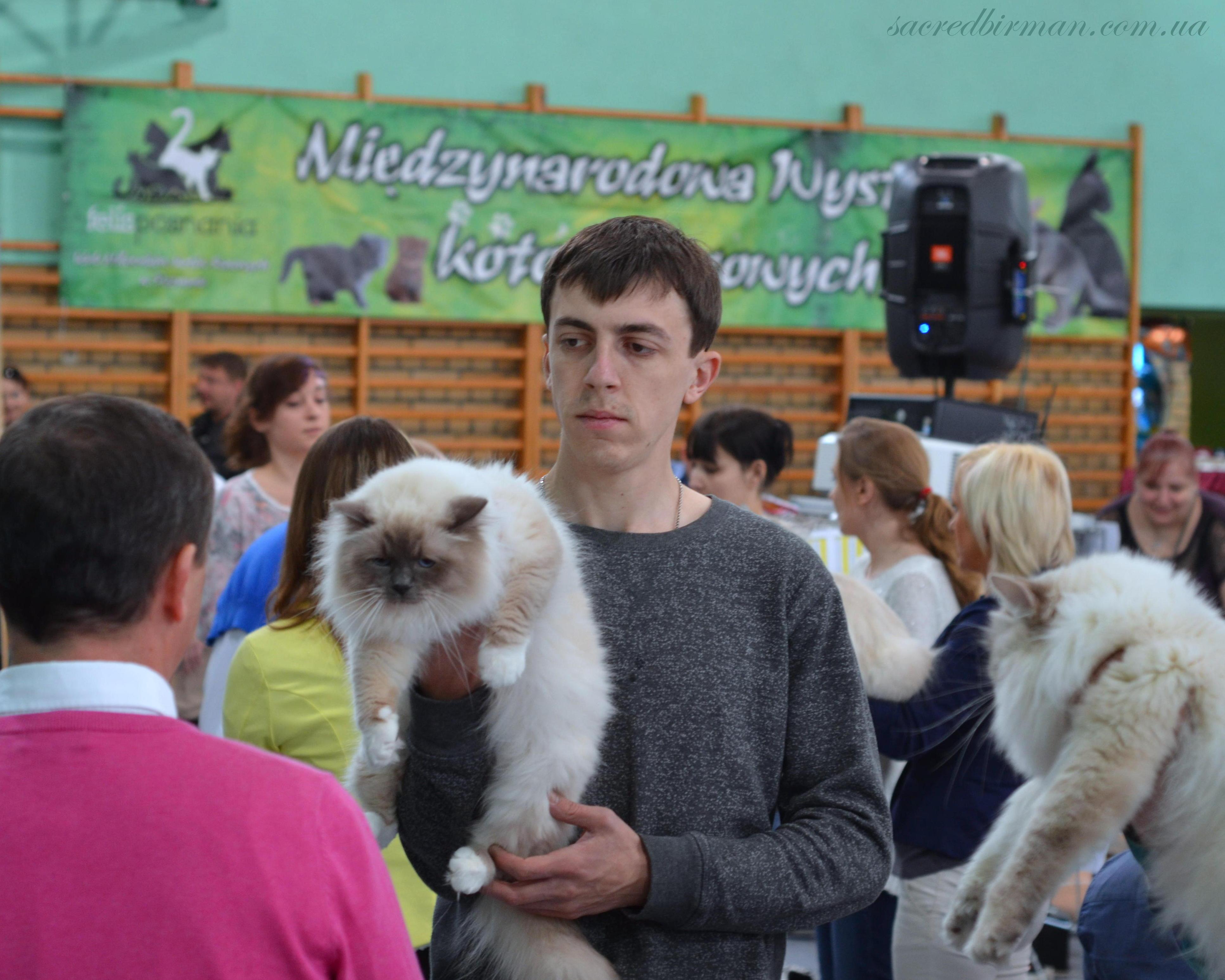 Выставка Косьцян Юра и Бобби.JPG