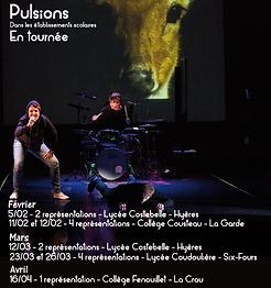 pulsions.png
