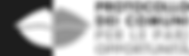 logo pop orizzontale.png