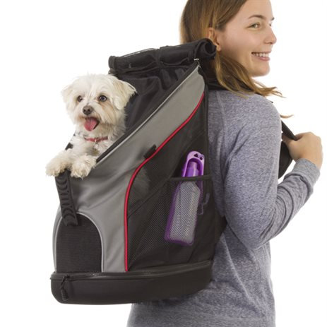 Backpack Pet Carrier - Jack and Dixie